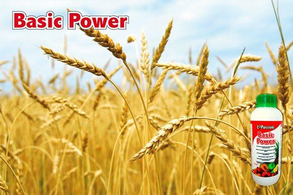 biostymulator-basic-power-1