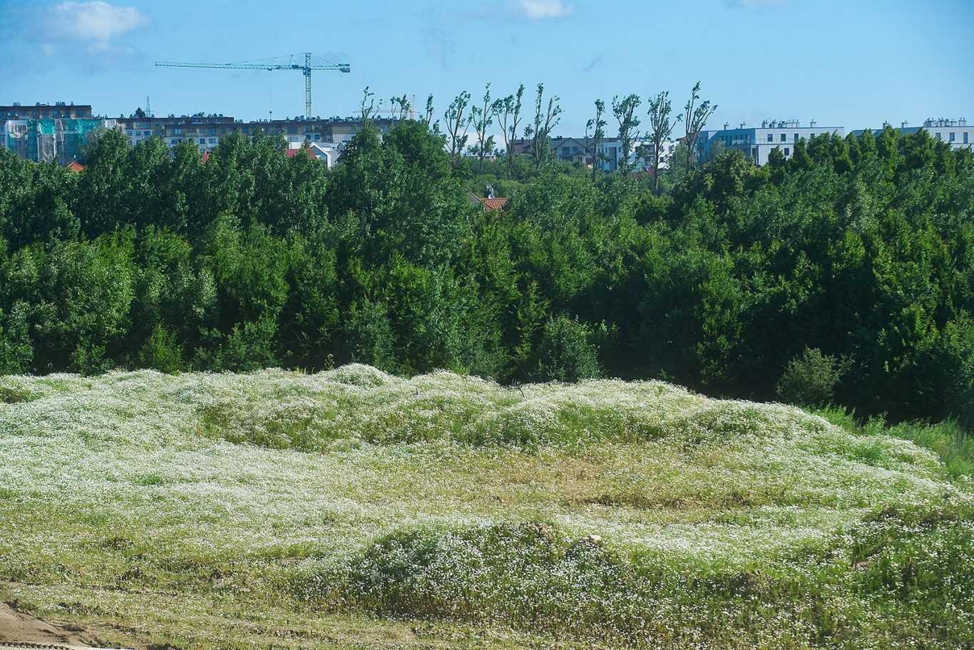 osiedle hiszpanskie gdansk poludnie okolica