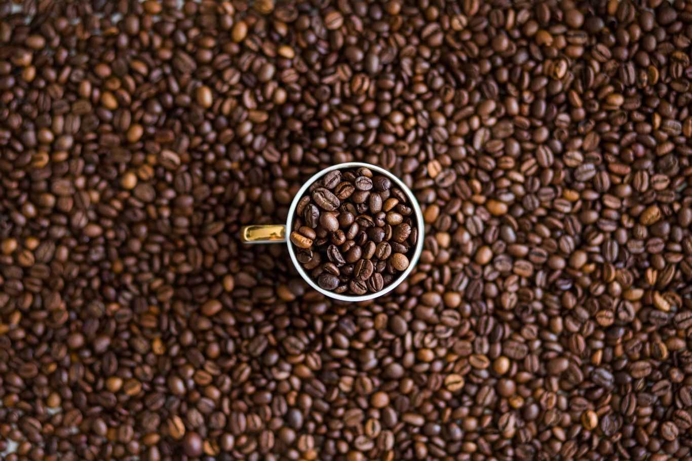kawy-mielone-ziarniste-palone-cafe-creator-sklep-producent-20
