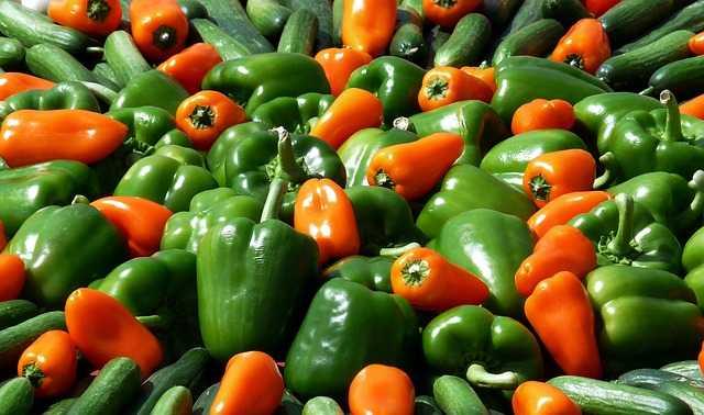 bio sklep ze zdrową żywnością Tobio 8